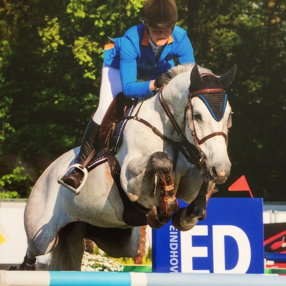SH-sporthorses_sportpaarden-stal_paarden_02
