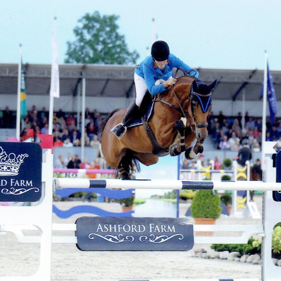 SH-sporthorses_sportpaarden-stal_paarden_08